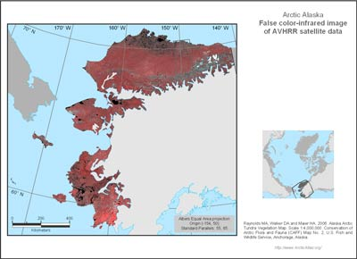 Alaska Arctic AVHRR False-color Infrared Base Map