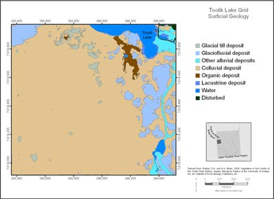 Toolik Lake Grid Surficial Geology