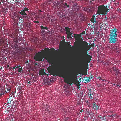 Toolik Lake Area SPOT False-Color Infrared Image