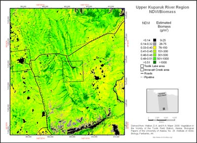 Upper Kuparuk River Region NDVI and Phytomass
